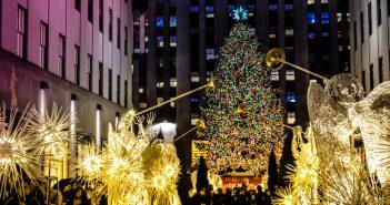 Los neoyorquinos reciben con entusiasmo el famoso abeto del Rokefeller Center
